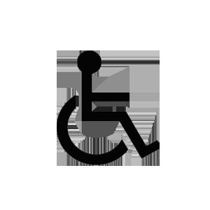 Wheelchair Access